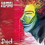 Said Campi di Grano (Single)