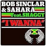 Bob Sinclar I Wanna (Feat. Shaggy)