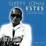 Sleepy John Estes Jailhouse Blues