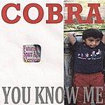 Cobra You Know Me (Futuristic Space Age Version)