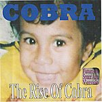 Cobra The Rise Of Cobra (Futuristic Space Age Version)