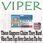 Viper These Rappers Claim They Hard When Them Fags Never Even Seen The Pen (Futuristic Space Age Version)