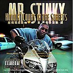 Mr. Stinky Holdin Court In The Streets (Parental Advisory)