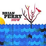 Brian Perry Now