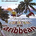Carlos Malcolm Christmas In The Caribbean