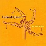 Carlos Del Junco Up And At 'em