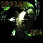 Noa Organic (Original Mix)