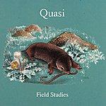 Quasi Field Studies