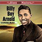 Billy Boy Arnold Essential Blues Masters