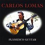 Carlos Lomas Flamenco Guitar