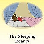 R.P. Sleeping Beauty