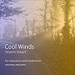 Andy Findon Cool Winds, Warm Heart - For Relaxation And Meditation