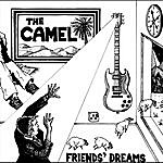 Camel Friends' Dreams