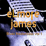 Elmore James Blues Masterclass, Vol. 1