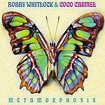 Bobby Whitlock Metamorphosis