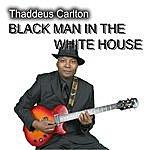 Thaddeus Carlton Black Man In The White House
