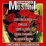 Enrico Musiani Cimitero di Rose