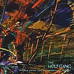 Wolfgang Songs From The Hummingbird House