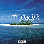 David Mitcham Wild Pacific