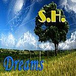 S.H. Dreams