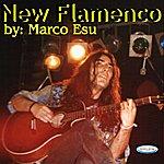 Marco Esu New Flamenco