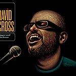 David Cross Bigger And Blackerer
