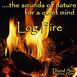 David Sun Log Fire (The Sounds Of Nature For A Quiet Mind)