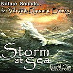 David Sun Storm At Sea (Nature Sounds For Vibrant-Dynamic Energy)