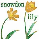 Jeb Loy Nichols Snowdon Lily