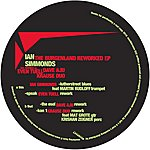 Ian Simmonds The Burgenland Dubs Reworked