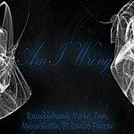 Knucklehead Am I Wrong (Feat. Karlos Farrar) - Single