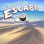 Chris Kalogerson Hawaiian Escape