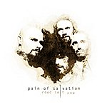 Pain Of Salvation Road Salt One