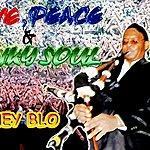 Honey Blo Love Peace & Funky Soul (Single)