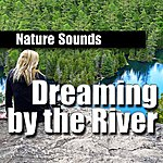Nature Sounds Dreaming By The River