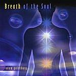 Adam Gainsburg Breath Of The Soul Meditation