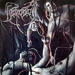 Beheaded Recounts Of Disembodiment