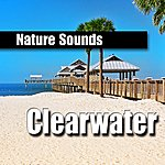 Nature Sounds Clearwater