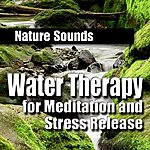 Nature Sounds Water Therapy For Meditation And Stress Release