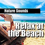 Nature Sounds Relax At The Beach
