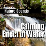 Nature Sounds Calming Effect Of Water