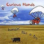 Curious Hands Bangin' Like A Fox