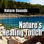 Nature Sounds Nature's Healing Touch