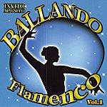World Music Atelier Invito Al Ballo Ballando Flamenco Volume 1