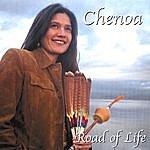 Chenoa Road Of Life