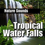 Nature Sounds Tropical Water Falls
