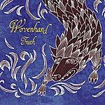 Wovenhand Truth (Single)