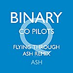 Ash Binary (Co Pilots Flying Through Ash Remix)
