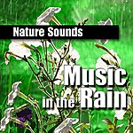 Nature Sounds Music In The Rain (Music And Nature Sound)