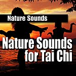 Nature Sounds Nature Sounds For Tai Chi